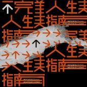 Bu Wan Mei Ren Sheng Zhi Nan von Various Artists