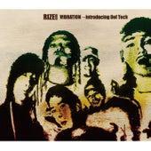 VIBRATION ~introducing Def Tech von Rize
