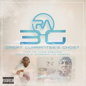 3G (Great Guarantee's Ghost) by RA