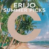 ERIJO Summer Picks, Vol. 1 by Various Artists
