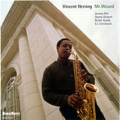 Mr. Wizard by Vincent Herring