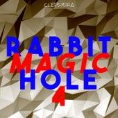 Rabbit Magic Hole 4 de Various Artists