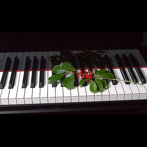 My Christmas Piano by Paul Taylor
