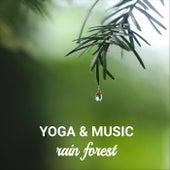 Rain Forest von Yoga