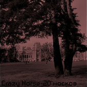 20 носков de Crazy Horse