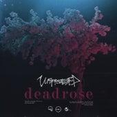 Deadrose von Unprocessed