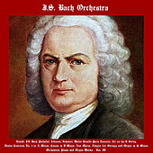 Vivaldi, J.S. Bach, Pachelbel, Albinoni, Schubert, Walter Rinaldi: String Concerto, Air On The G String, Violin Concerto No. 1 in A Minor, Canon in D Major, Ave Maria, Adagio for Strings and Organ in G Minor, Orchestral, Organ and Piano  Works - Vol. II de Johann Sebastian Bach