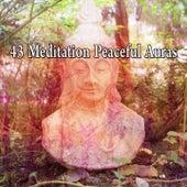 43 Meditation Peaceful Auras von Massage Therapy Music