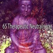 65 Therapeutic Neutralisers von Yoga