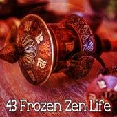 43 Frozen Zen Life by Classical Study Music (1)