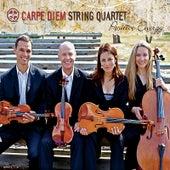 Positive Energy by Carpe Diem String Quartet