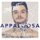 Appaloosa de Zarcort