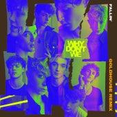 Fallin' (Adrenaline) (GOLDHOUSE Remix) von Why Don't We