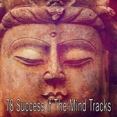 78 Success If the Mind Tracks by Zen Meditate
