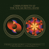Woodpiles On The Side of The Road / Alice in Blunderland / When You Smile / Barstool Blues by Chris Forsyth