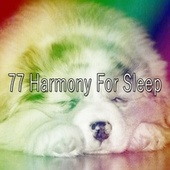 77 Harmony for Sle - EP by Best Relaxing SPA Music