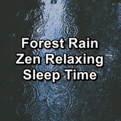 Forest Rain Zen Relaxing Sleep Time von Nature Recordings