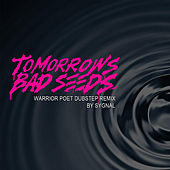 Warrior Poet DubStep (Remix) by Tomorrows Bad Seeds