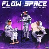 Flow Space von Paryseo