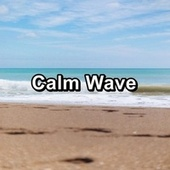 Calm Wave by Spa Music (1)