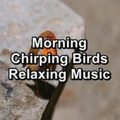 Morning Chirping Birds Relaxing Music de Yoga