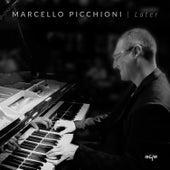 Later by Marcello Picchioni