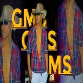 Fazendeiro by GMS