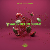 Watermelon Sugar by Montagne