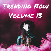 Trending Now Volume 13 by Various Artists