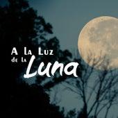 A La Luz De La Luna von Various Artists
