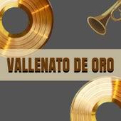 Vallenato de Oro de Binomio de Oro, Los Chiches Vallenatos, Los Embajadores Vallenatos, Los Inquietos del Vallenato, Miguel Morales, Patricia Teherán, Los Gigantes Del Vallenato