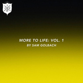 More To Life, Vol. 1 by Sam Golbach by Various Artists