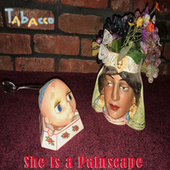 She is a Painscape by John Tabacco