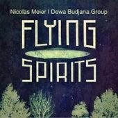 Flying Spirits von Nicolas Meier