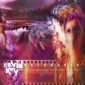 Resonance de cEVIN Key