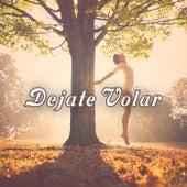 Dejate Volar von Various Artists