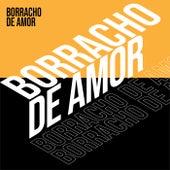 Borracho de amor von Various Artists