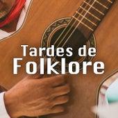 Tardes de Folklore de Various Artists