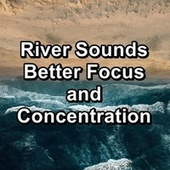 River Sounds Better Focus and Concentration de Yoga