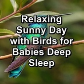 Relaxing Sunny Day with Birds for Babies Deep Sleep by Spa Relax Music