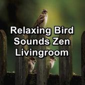 Relaxing Bird Sounds Zen Livingroom von Yoga Music