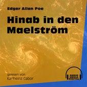 Hinab in den Maelström (Ungekürzt) von Edgar Allan Poe