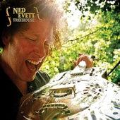 Treehouse by Ned Evett