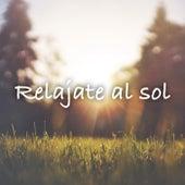 Relajate al sol de Various Artists