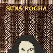 Antofalla de Suna Rocha