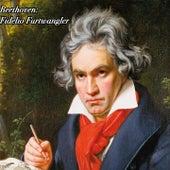 Beethoven: Fidelio Furtwangler von Wiener Philharmoniker