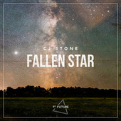 Fallen Star by CJ Stone