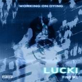 Find Me von Working on Dying