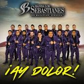 ¡Ay Dolor! de Banda Los Sebastianes