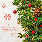 Kerst in het Nederlands von Various Artists